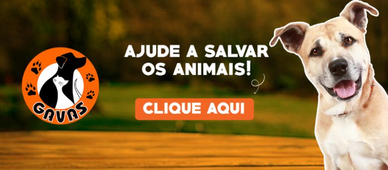 Gavas - Ajude a salvar os animais! Faça uma doação.